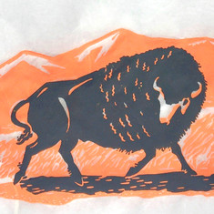Bucky the Bison