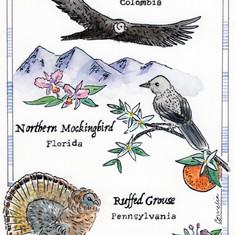 Birds of Home