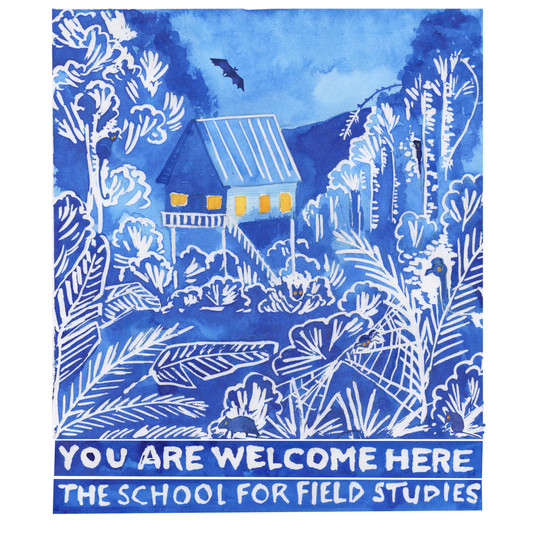 The School for Field Studies Warrawee, Australia. 25th Anniversary T-Shirt Design