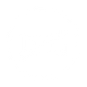 ICON nocapital 1.png