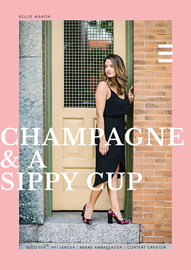 Champagne & a Sippy Cup Media Kit - Pric