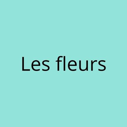 Les fleurs (1).jpg