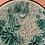 Thumbnail: MAJOLICA PLATE #8