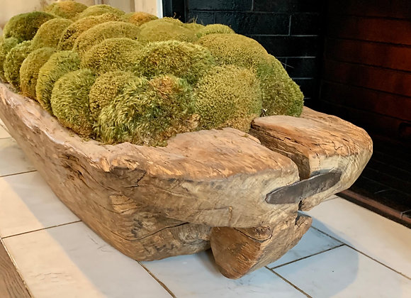 HUGE ANTIQUE DOUGH BOWL FILLED WITH MOSS
