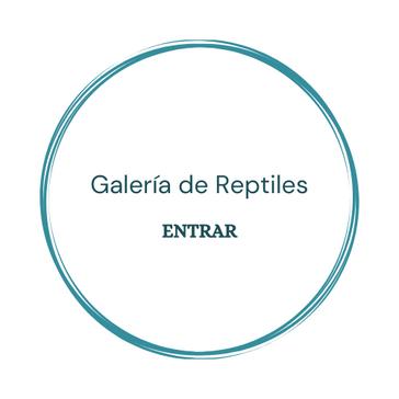 Galería de Reptiles.png