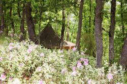 tent-green