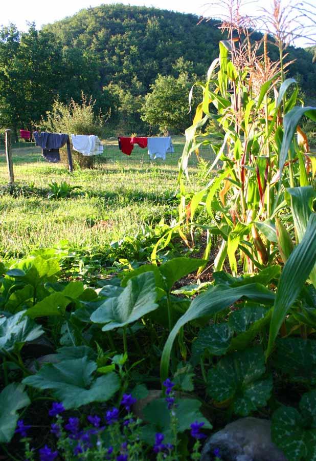 linge-jardin