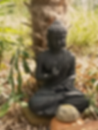 buddha png.png