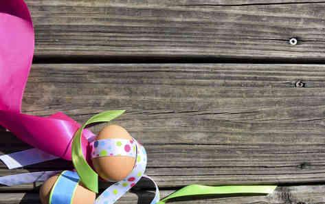 Фото яиц на фоне дерева