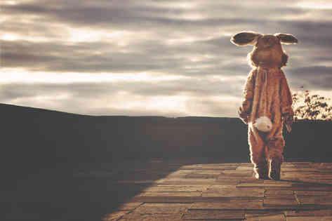 Фотография человека в костюме пасхального кролика
