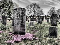 Local Obituaries