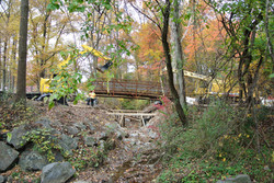 Site Work FOREST GROVE PED BRIDGE