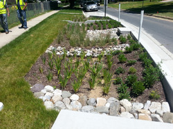DENNIS AVE LID WITH PLANTINGS