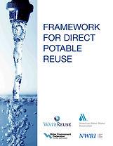 Framework for DPR cover_1.jpg