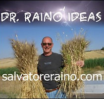 WebSite Salvatore Raino.jpg
