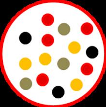 Processo - Inclusione.png