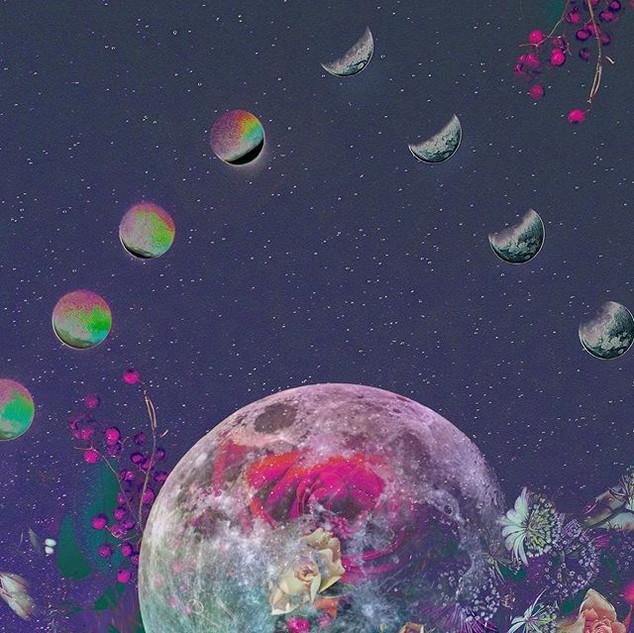Moon Flower 🌘🌿🌗🌿🌒 . . .  Ig_undergr