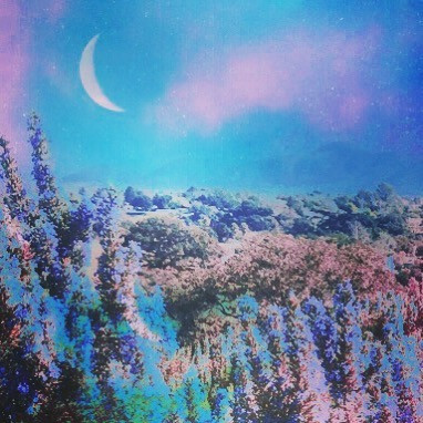 Lavender Moon 🌙 . . . #collageart#surre