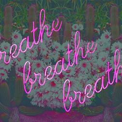 Breathe 🌵🌸🌵 . . . #rainysaturday#brea
