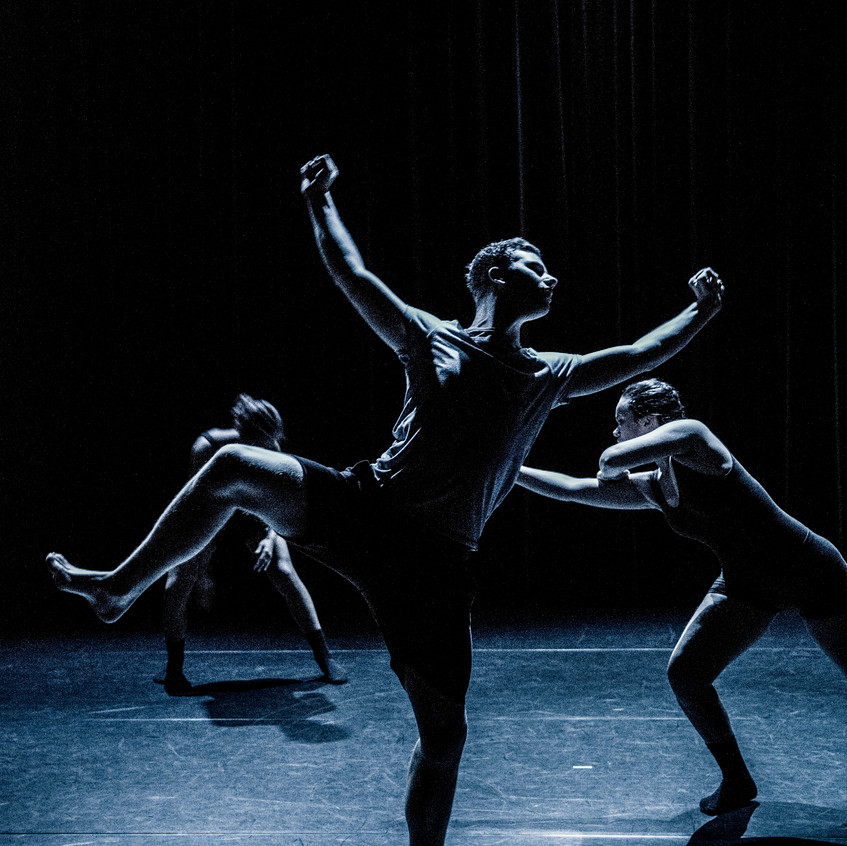 Company Danst! - 036