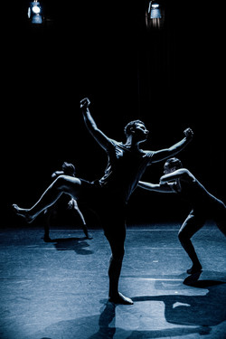 Company Danst! - 035