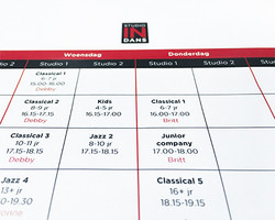 LESROOSTER STUDIO IN DANS