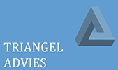 Triangel Advies 169x101.png