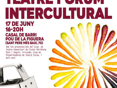 6ª Marató de Teatre Fòrum Intercultural