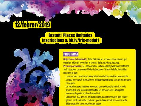 Joves, interculturalitat i relacions afectives: formació per a professionals que treballen amb joves