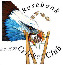 Rosebank Cricket Club accepted into the DVCA!