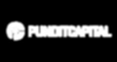 logo_2019_pundit-02_edited.png