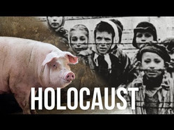 The Daily Holocaust