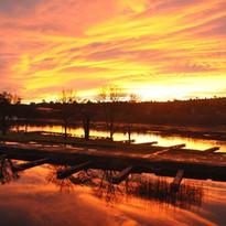 Copy of sunset%203_edited.jpg