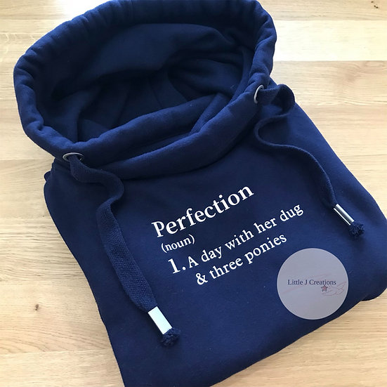 Perfection Definition Hoodie