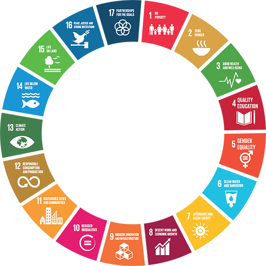 kisspng-sustainable-development-goals-sustainability-unite-goal-5ac899843931c9_edited.png