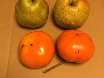 ラフランスと柿