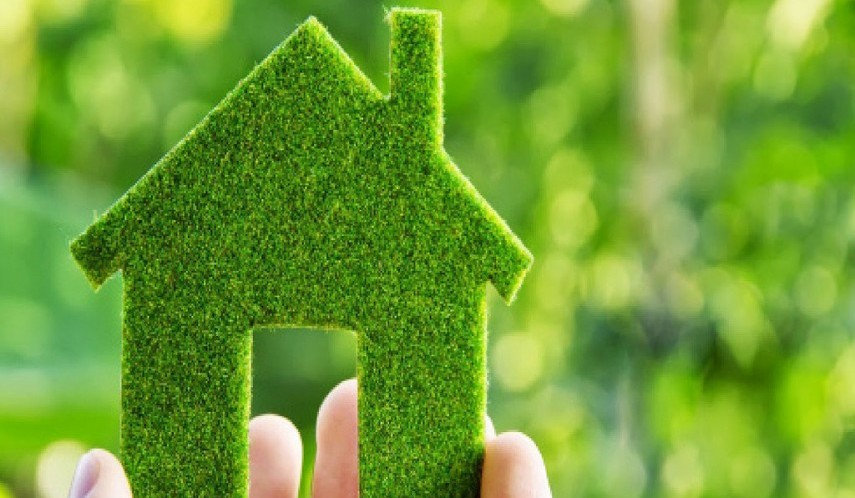 green home.jpg