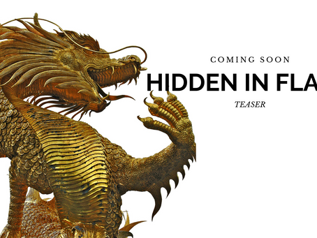 HIDDEN IN FLAME TEASER