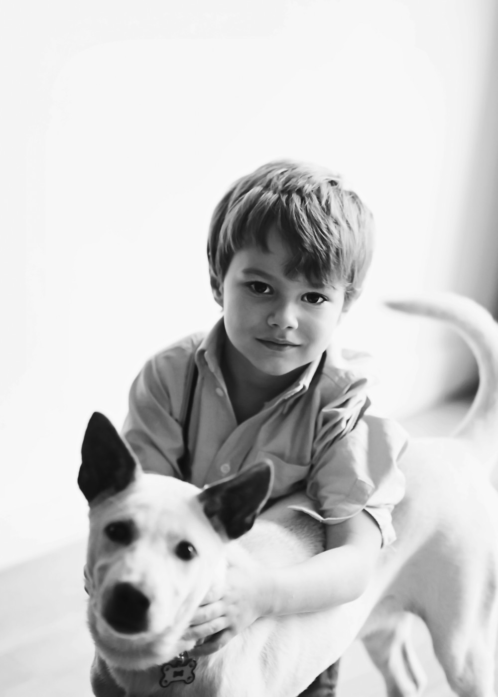 Toddler, Dog