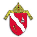 diocese of laredo logo.jpg