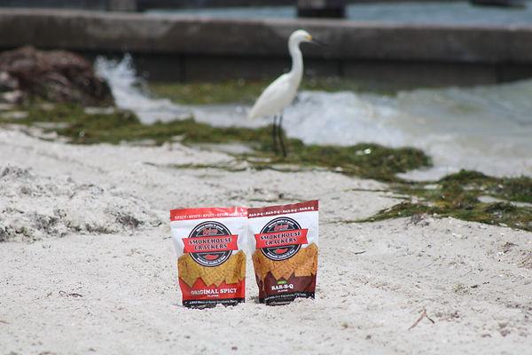 crackers on beach with bird2.JPG