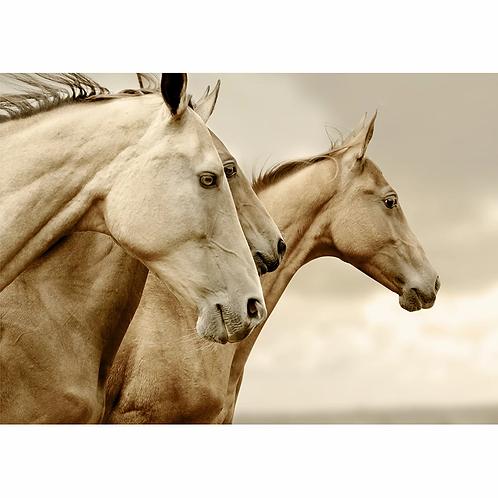 Mint Sepia Horses