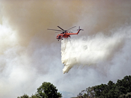 ANZ pledges $1 million for bushfire relief
