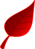 red-leaf-clipart-nature_seasons_autumn_f