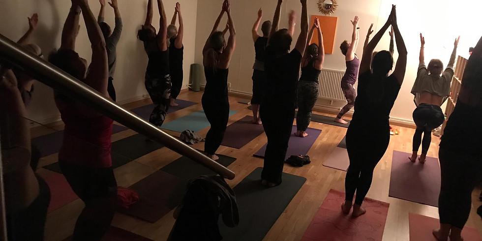 Ashtanga yoga Workshop med Bill Brundell