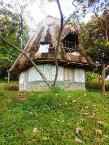 Casa de Semillas CEPA Viracocha