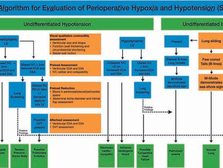 Algoritmo simplificado para la evaluación de la hipoxia e hipotensión perioperatoria
