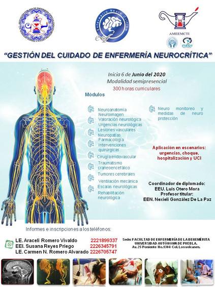 Neurocritica.jpg