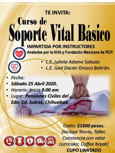Soporte  Vial Basico.jpg