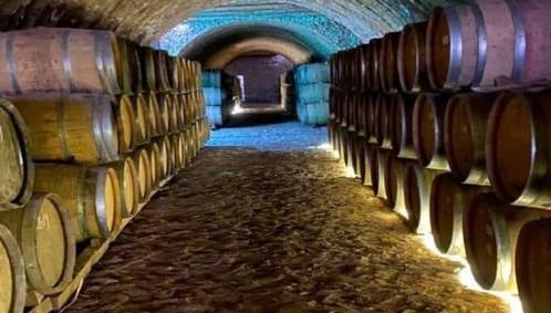 Foto-Fb-Tequila-Jalisco-Pueblo-Magico-560x600.jpg